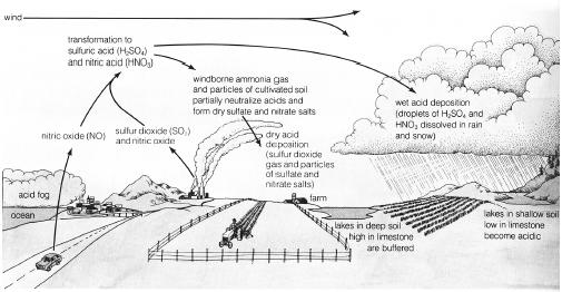 The basic mechanisms of acid deposition. (Illustration by Wadsworth Inc. Reproduced by permission.)