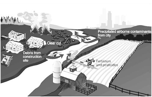 Nonpoint sources of water pollution. (Illustration by Hans & Cassidy.)